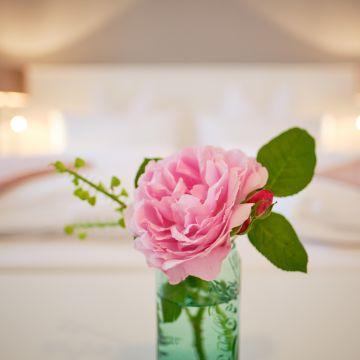 B&B Domizil