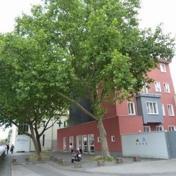 Hostel Pathpoint Cologne
