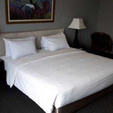 Hotel Sintesa Peninsula