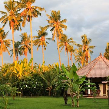 Hotel Bali Oase Resort