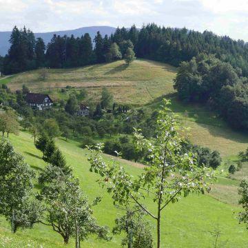 Berggasthof-Pension Wandersruh