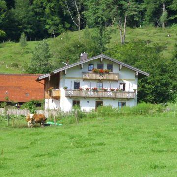 Bauernhof Knogler