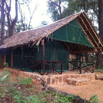 Lodge Patterson's Safari Camp