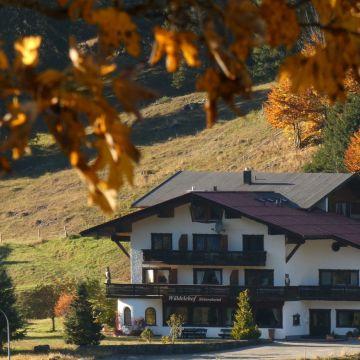 Hotel Gasthof Hammerer