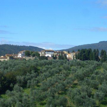Hotel & Apartments Fattoria Artimino