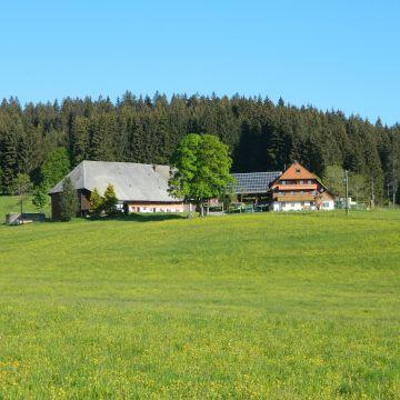 Rengethof