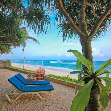 Hotel Haus am Meer Wilde Ananas