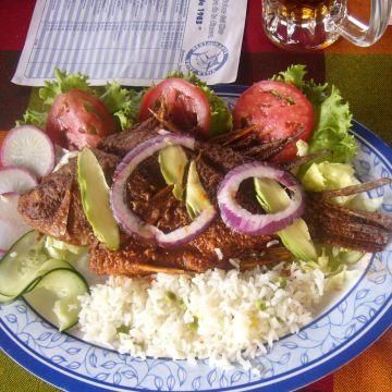 Hotel Marriott Real Puebla