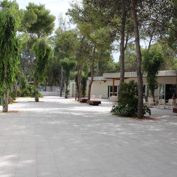 Hotel Sira Resort