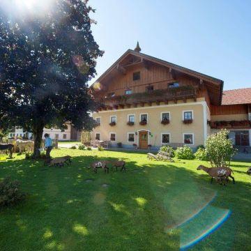 Bauernhof Kinderparadies Bachbauer