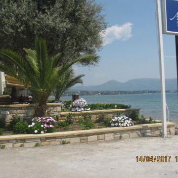 Hotel Avantis