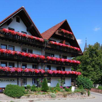 Hotel Waldblick BSR
