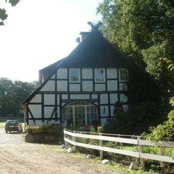 Reiterhof Witthof Aljarn