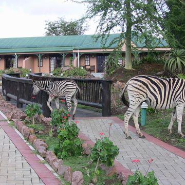 Hotel Zulu Nyala Heritage Safari Lodge
