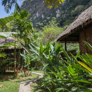 Our Jungle House Resort
