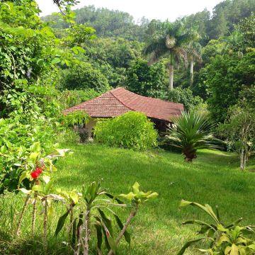 Hacienda Codina