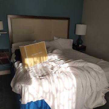 Hampton Inn & Suites Orlando At SeaWorld
