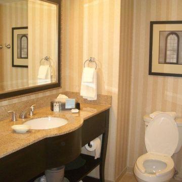 Hotel Hampton Inn & Suites Albany-Downtown, NY
