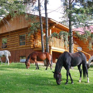 Beaver Guest Ranch