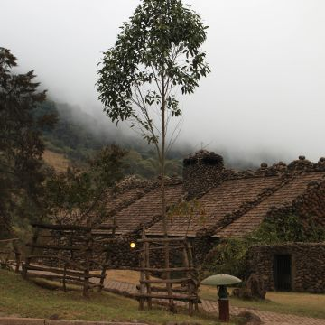 Hotel Ngorongoro Serena Safari Lodge