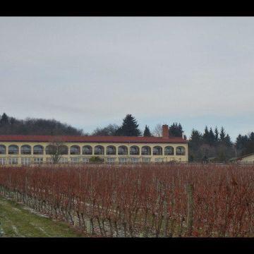 Hotel Rebschule