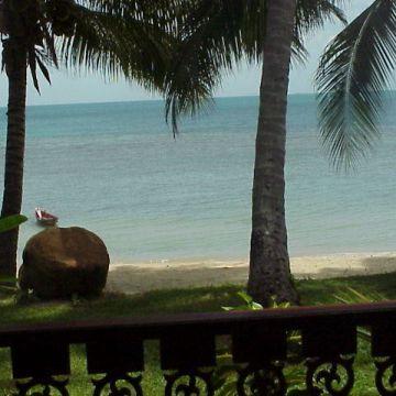Coconut Tropicana T 1