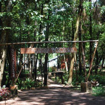 Hotel Campamento Morichal