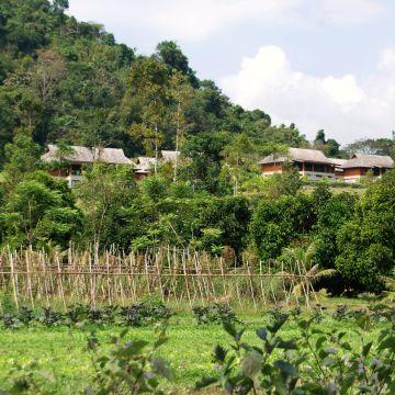 Hotel Thanyamundra Organic Resort