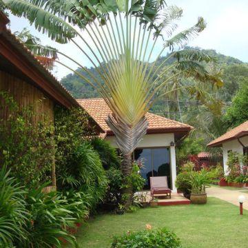 Seaview Paradise Beach Villas