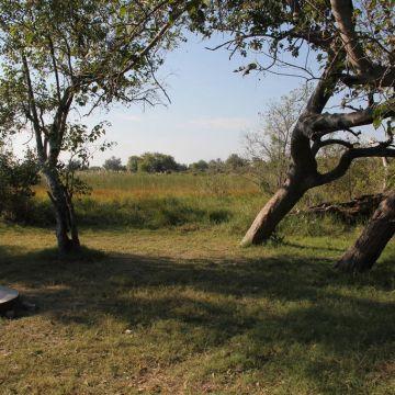 Third Bridge Campsite Moremi Game Reserve
