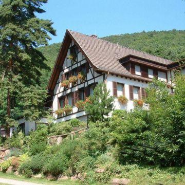 Hotel Waldhaus Wilhelm