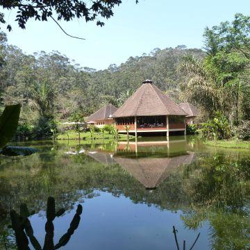 Hotel Vakona Forest Lodge