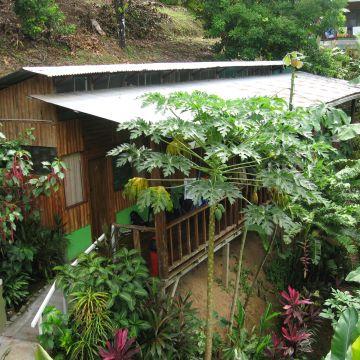 Guesthouse Cabinas Manolo Drake Bay