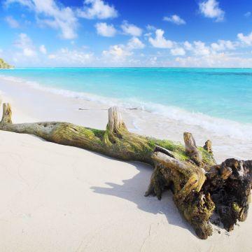 Holiday Cottage Thoddoo, Maldives
