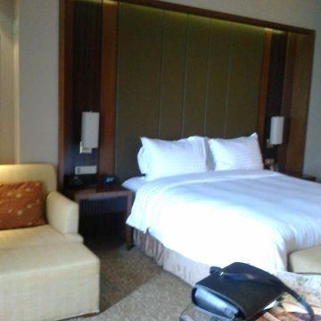 Hotel Hilton Nanjing Riverside
