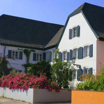 Hotel Rhein River Guesthouse