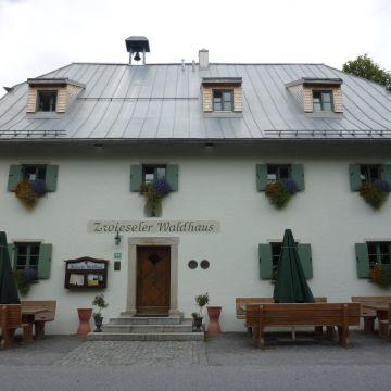 Hotel Zwieseler Waldhaus