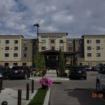 Best Western Premier Hotel Freeport Inn & Suites