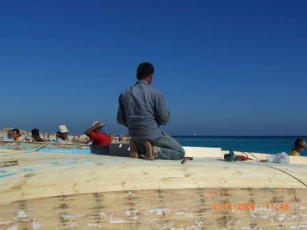 Fleißig - Giftun / Mahmya Inseln