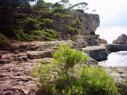 Die steile Küste - Bucht von Cala Santanyi