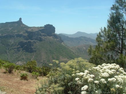 Bezaubernde Bergwelt - Bergwelt