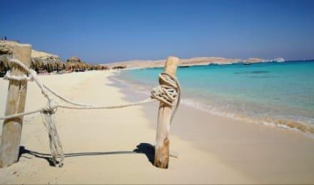 Die Strandbilder wurden alle auf der Insel Mahmya gemacht - Giftun / Mahmya Inseln