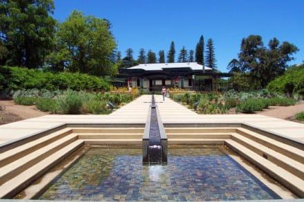 Beetanlage mit Wasserlauf - Botanischer Garten Adelaide
