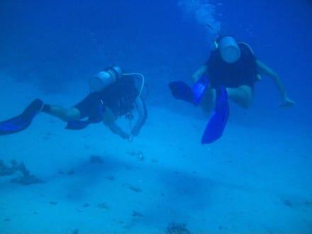 Unter Wasser... - Tauchen Marsa Alam