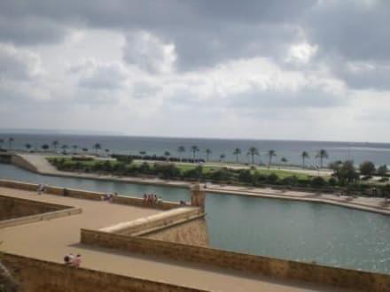 Palma Ausflug - Parc de la Mar