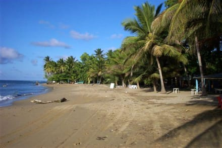Strand - Nordküste Playa Dorada - Strand Playa Dorada