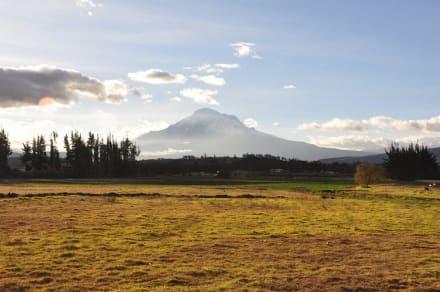 Chimborazo in der Abendsonne - Humboldts Straße der Vulkane