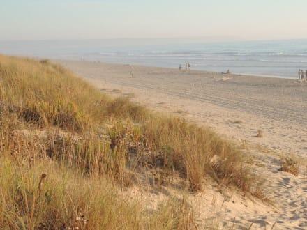 Dünen und Strand - Strände Costa da Caparica