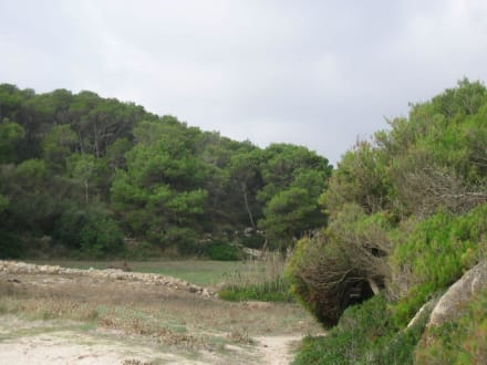 Naturpark - Naturpark Mondrago