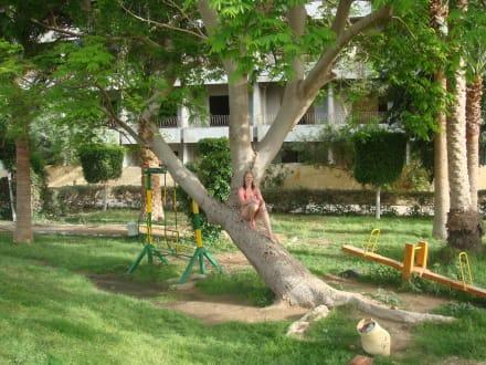 Gartenanlage - Regina Aqua Park Beach Resort